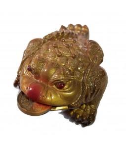 Золотая жаба с монетой